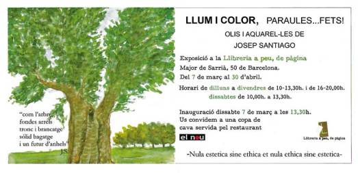 """Llum i color"""